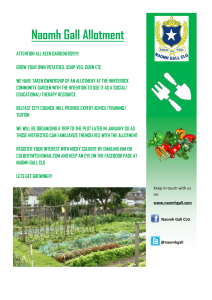 Naomh Gall Allotment-1